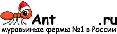 Муравьиные фермы AntFarms.ru - Нижний Тагил